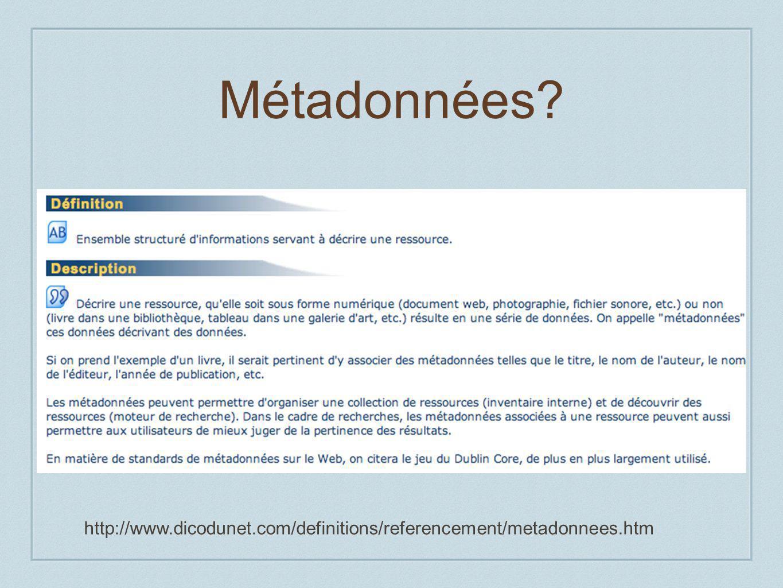 Métadonnées http://www.dicodunet.com/definitions/referencement/metadonnees.htm