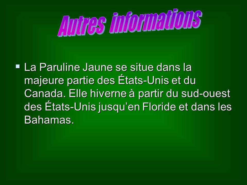 La Paruline Jaune se situe dans la majeure partie des États-Unis et du Canada.