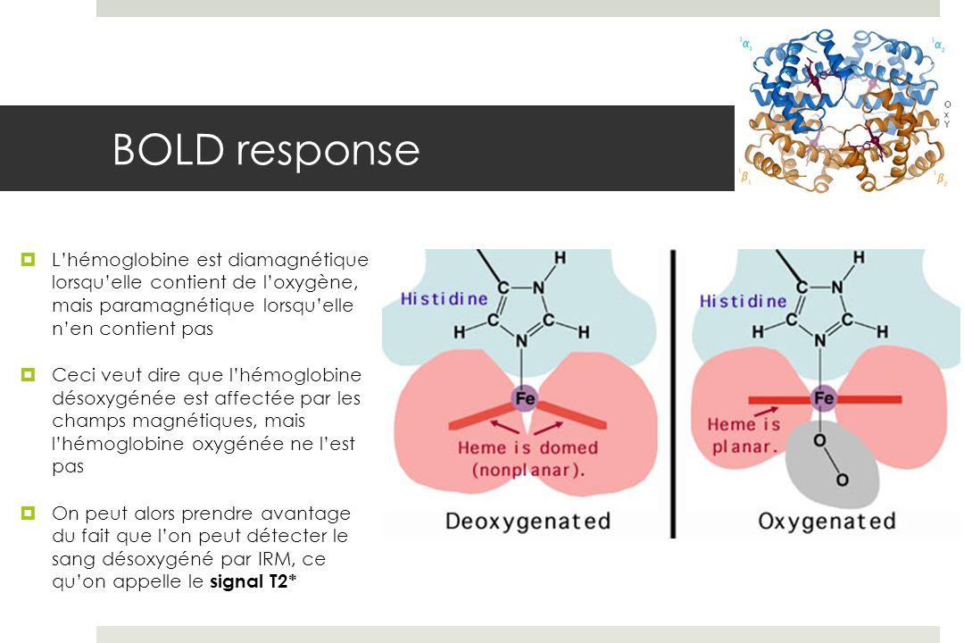 Lhémoglobine est diamagnétique lorsquelle contient de loxygène, mais paramagnétique lorsquelle nen contient pas Ceci veut dire que lhémoglobine désoxygénée est affectée par les champs magnétiques, mais lhémoglobine oxygénée ne lest pas On peut alors prendre avantage du fait que lon peut détecter le sang désoxygéné par IRM, ce quon appelle le signal T2*