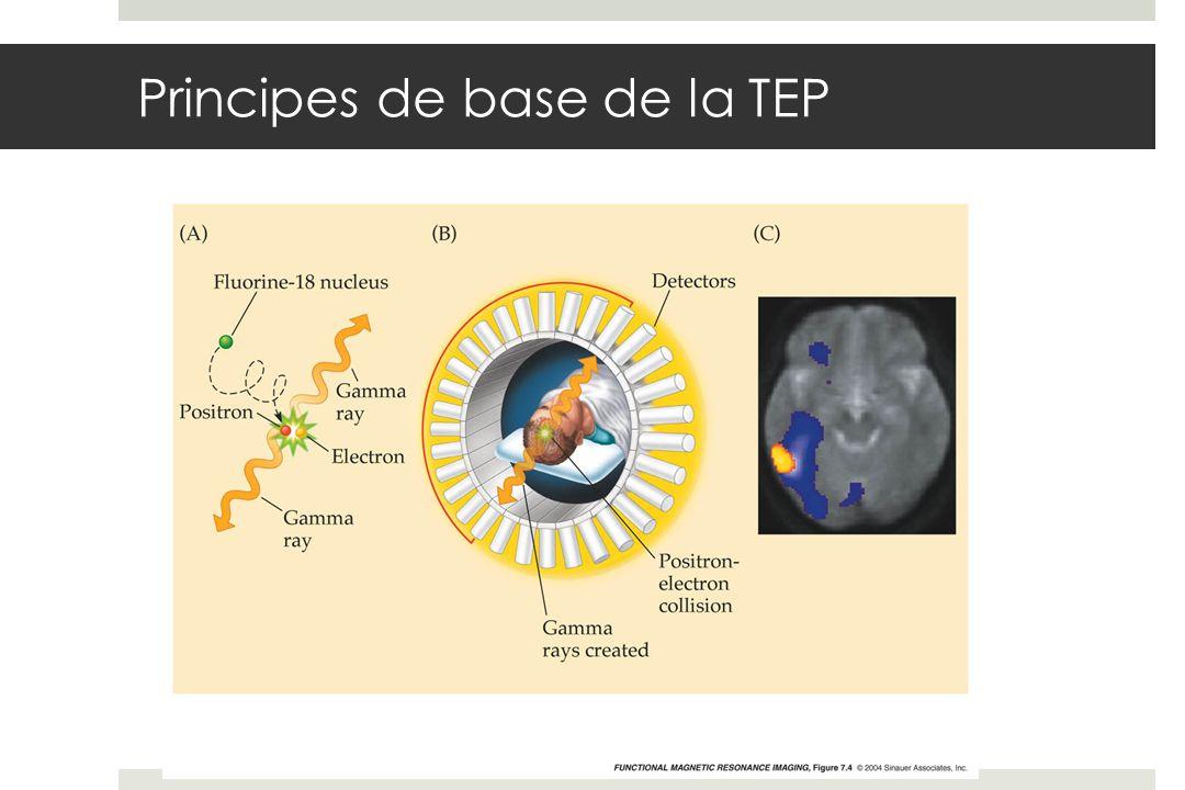Principes de base de la TEP