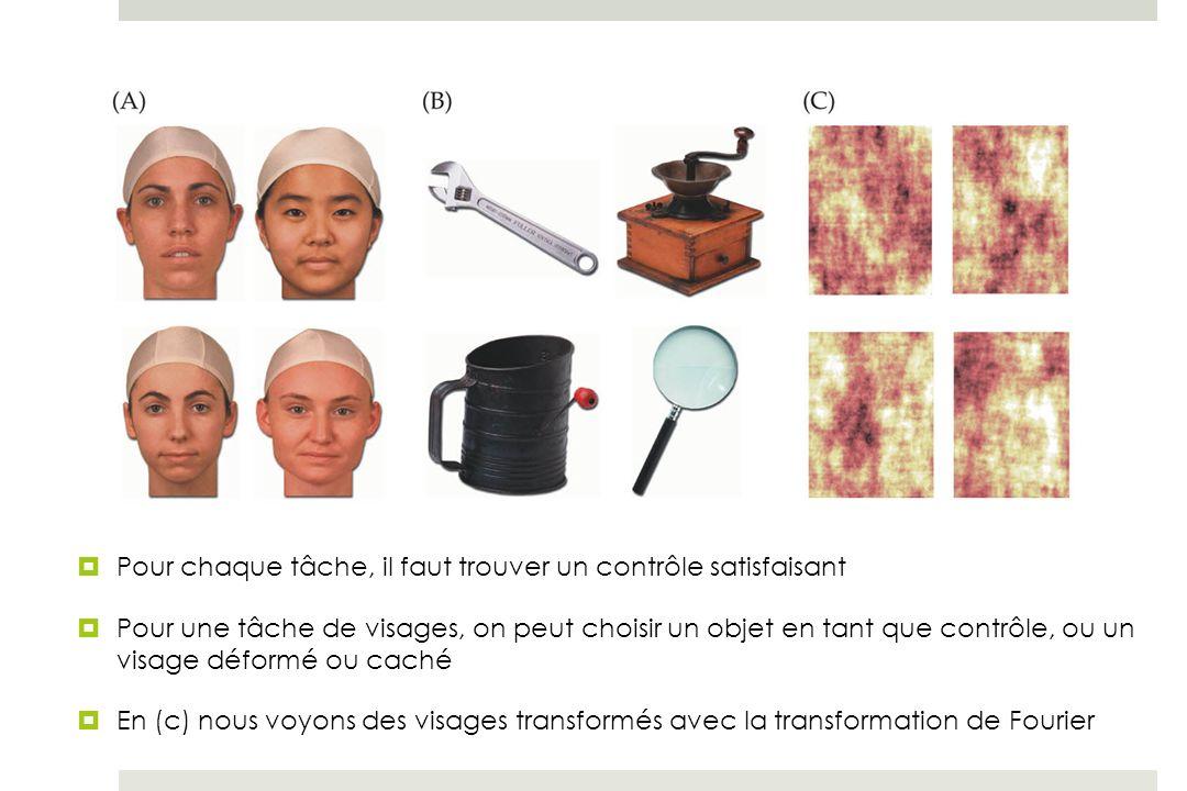 Pour chaque tâche, il faut trouver un contrôle satisfaisant Pour une tâche de visages, on peut choisir un objet en tant que contrôle, ou un visage déformé ou caché En (c) nous voyons des visages transformés avec la transformation de Fourier