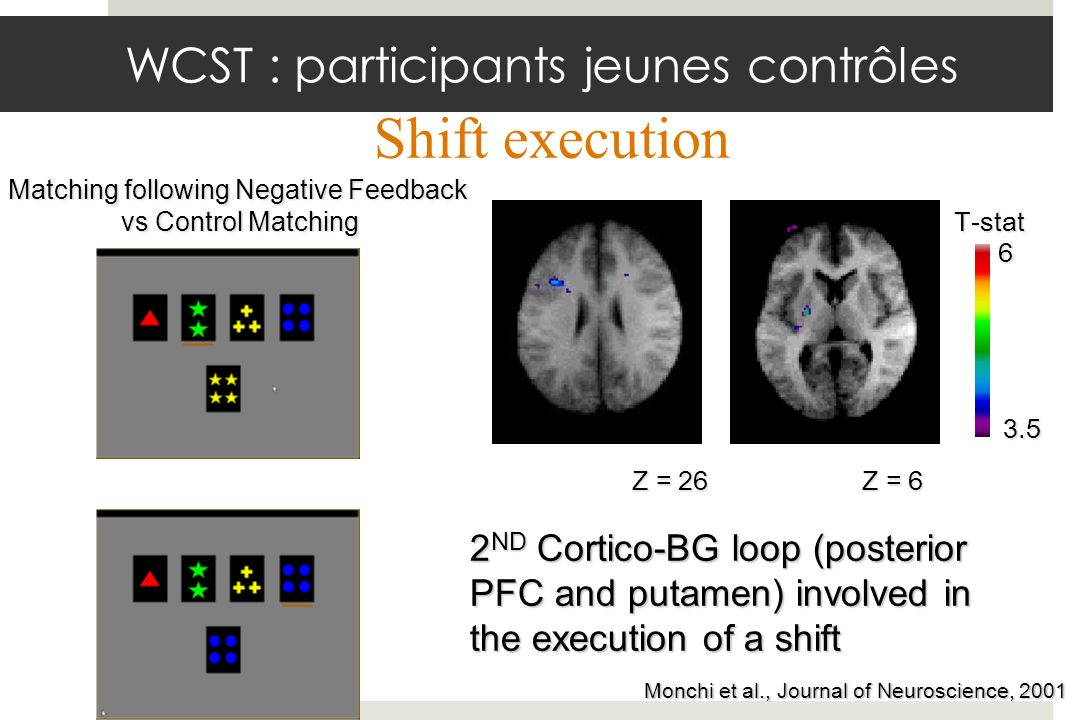 Z = 26 3.5 6 T-stat Z = 6 2 ND Cortico-BG loop (posterior PFC and putamen) involved in the execution of a shift Monchi et al., Journal of Neuroscience,2001 Monchi et al., Journal of Neuroscience, 2001 Matching following Negative Feedback vs Control Matching Shift execution WCST : participants jeunes contrôles
