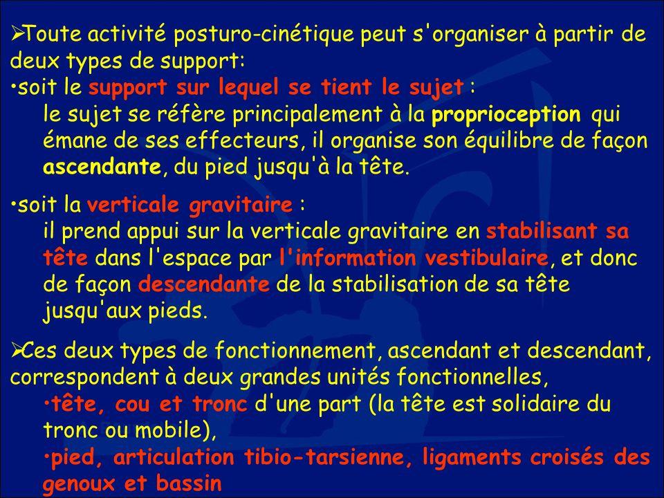 Toute activité posturo-cinétique peut s'organiser à partir de deux types de support: soit le support sur lequel se tient le sujet : le sujet se réfère
