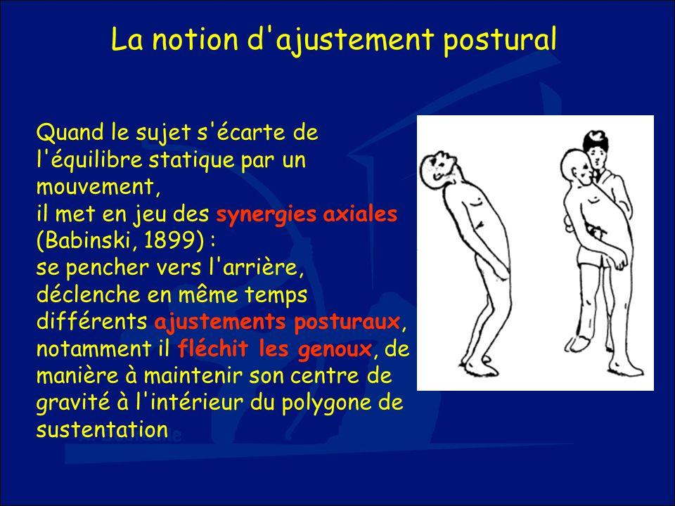 La notion d'ajustement postural Quand le sujet s'écarte de l'équilibre statique par un mouvement, il met en jeu des synergies axiales (Babinski, 1899)
