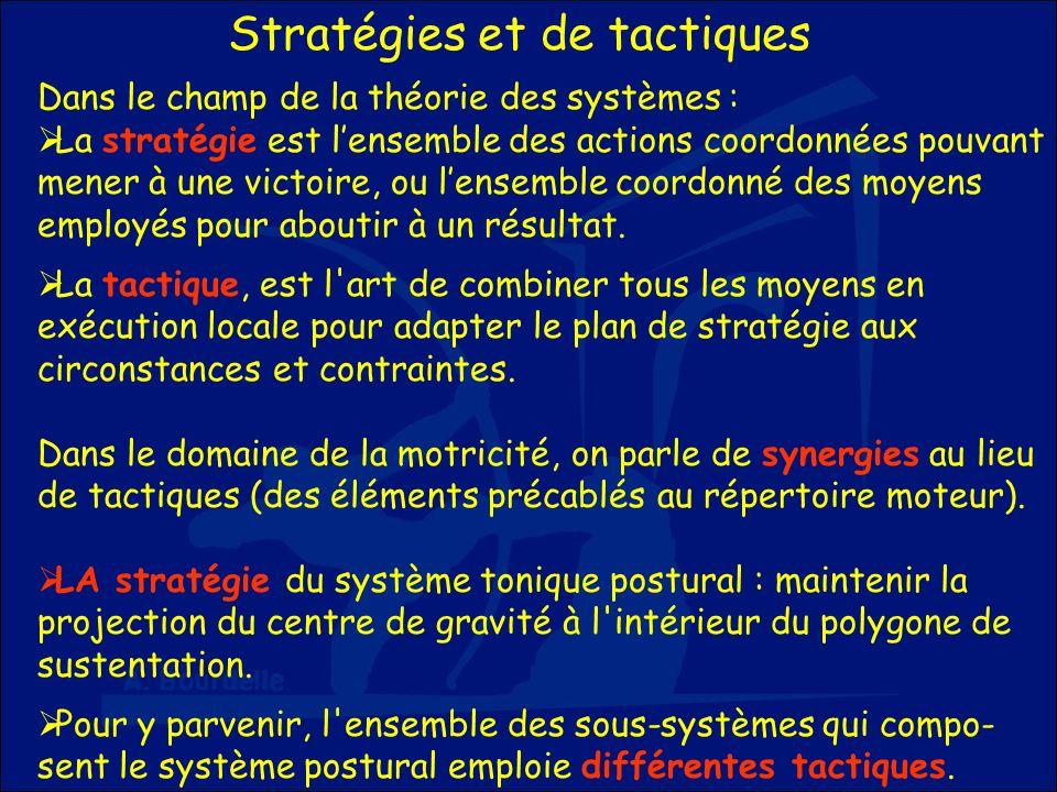 Stratégies et de tactiques Dans le champ de la théorie des systèmes : La stratégie est lensemble des actions coordonnées pouvant mener à une victoire,