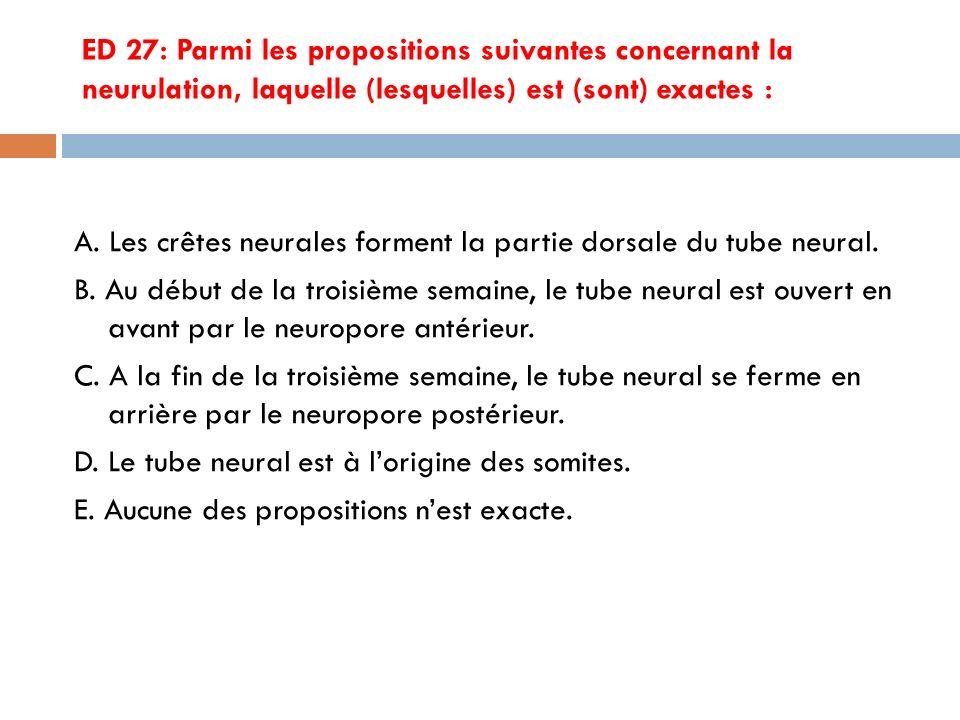ED 27: Parmi les propositions suivantes concernant la neurulation, laquelle (lesquelles) est (sont) exactes : A.