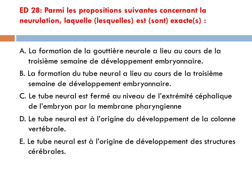 ED 28: Parmi les propositions suivantes concernant la neurulation, laquelle (lesquelles) est (sont) exacte(s) : A.