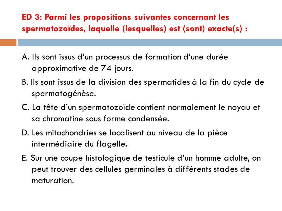 ED4 : Parmi les propositions suivantes concernant la formation des spermatozoïdes, laquelle (lesquelles) est (sont) exacte(s) : A.