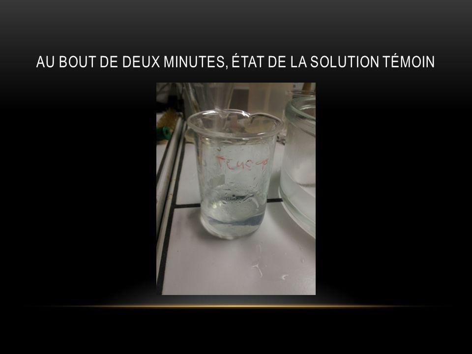 AU BOUT DE DEUX MINUTES, ÉTAT DE LA SOLUTION CHAUFFÉE
