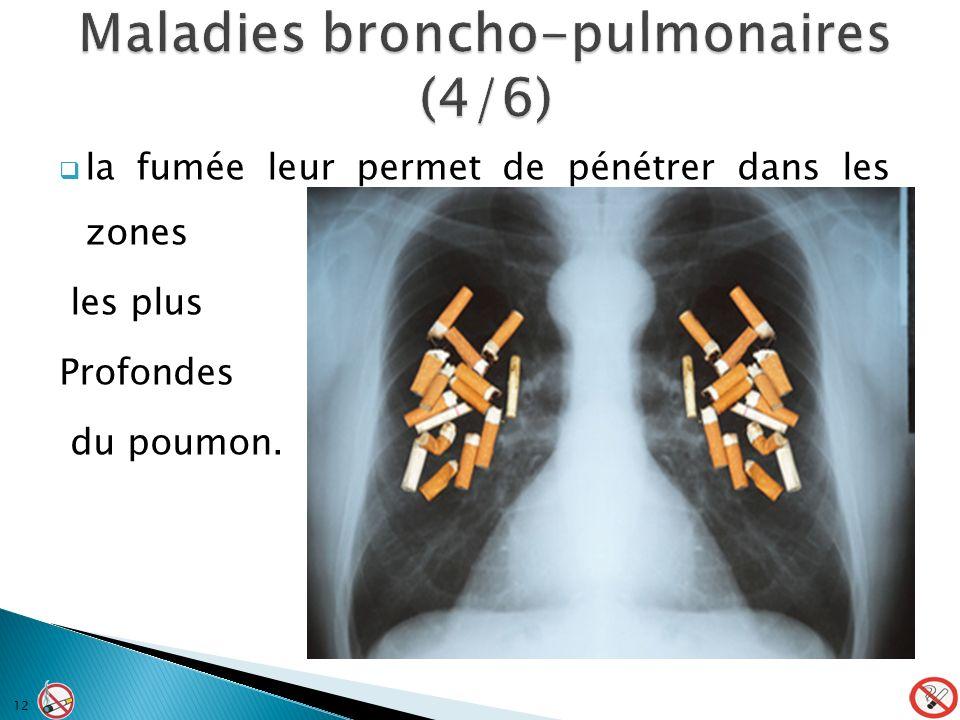 la fumée leur permet de pénétrer dans les zones les plus Profondes du poumon. 12