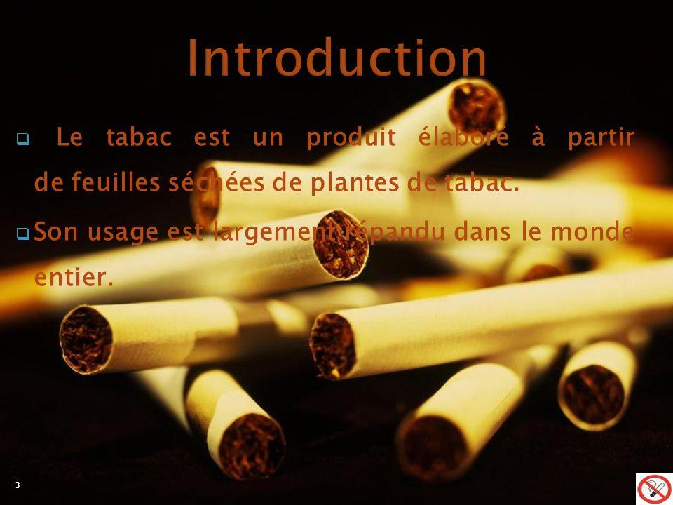 Le tabac est un produit élaboré à partir de feuilles séchées de plantes de tabac.