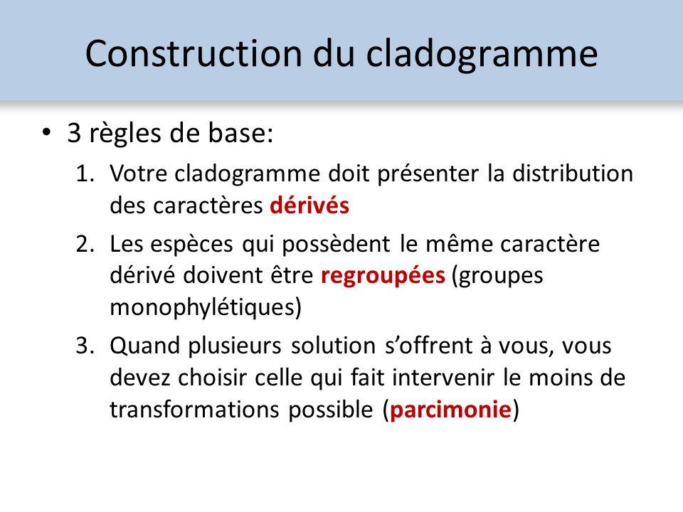 Construction du cladogramme 3 règles de base: 1.Votre cladogramme doit présenter la distribution des caractères dérivés 2.Les espèces qui possèdent le