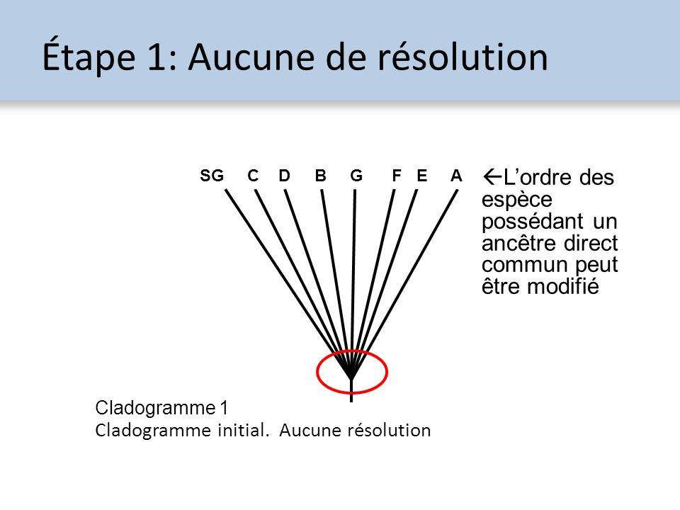 Étape 1: Aucune de résolution Cladogramme initial. Aucune résolution SG A B CDEFG Lordre des espèce possédant un ancêtre direct commun peut être modif