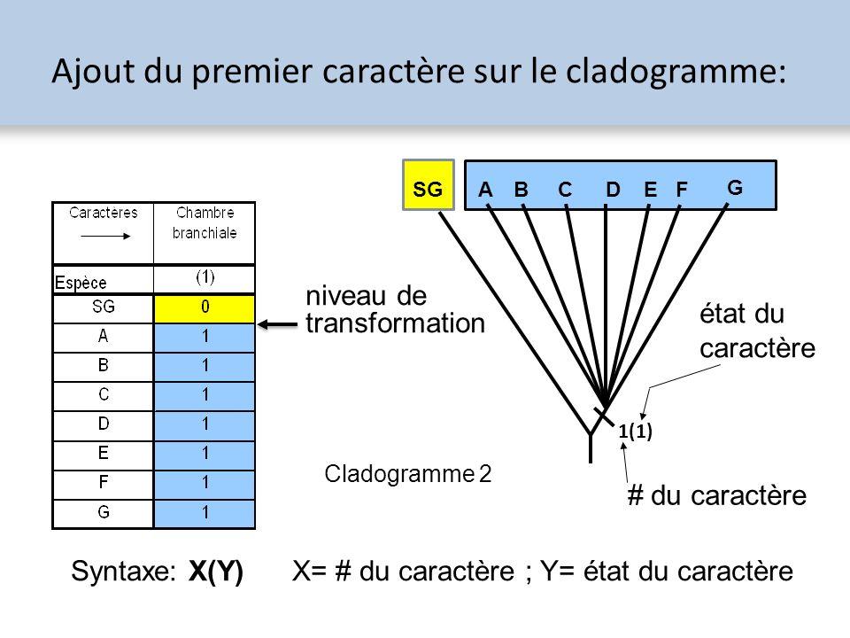 Ajout du premier caractère sur le cladogramme: SG A B CDEF G 1(1) # du caractère état du caractère Syntaxe: X(Y) X= # du caractère ; Y= état du caract