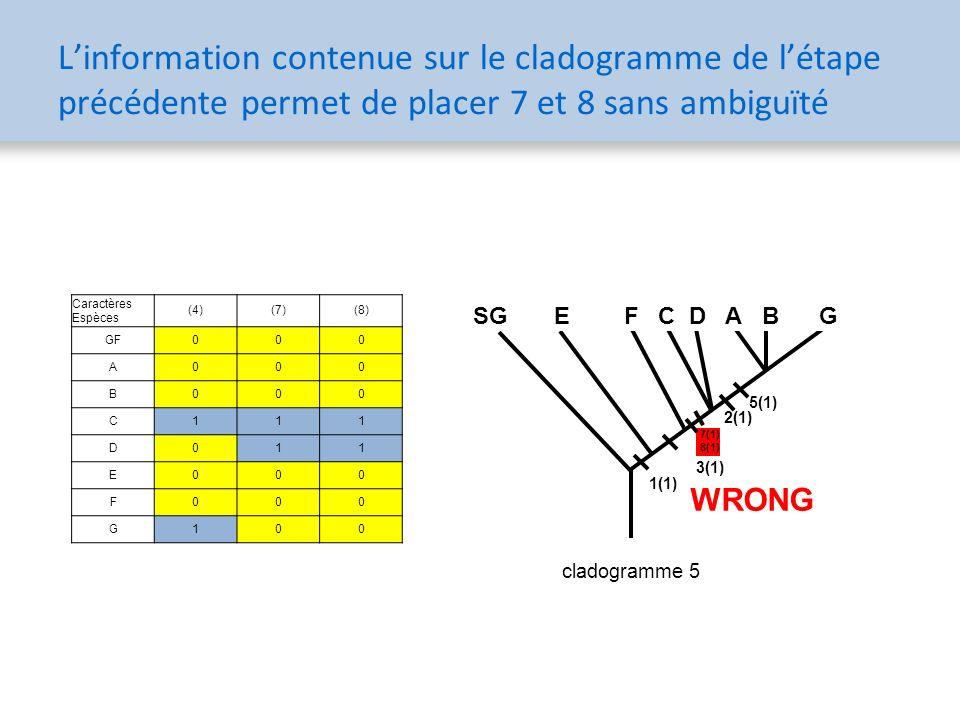 Caractères Espèces (4)(7)(8) GF000 A000 B000 C111 D011 E000 F000 G100 5(1) 1(1) 3(1) 2(1) SG E F C D A B G 5(1) 1(1) 3(1) 2(1) SG E F C D A B G 7(1) 8