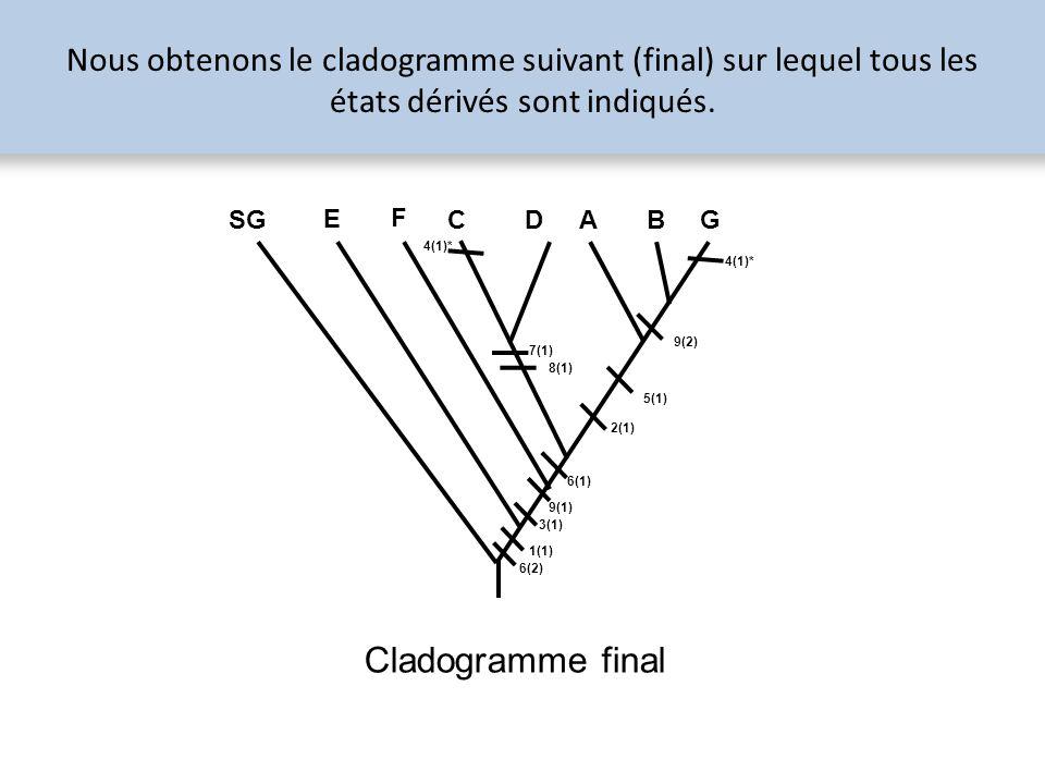 Nous obtenons le cladogramme suivant (final) sur lequel tous les états dérivés sont indiqués. 1(1) 3(1) 2(1) 5(1) 7(1) 8(1) 9(2) 9(1) 6(2) 6(1) SG E F