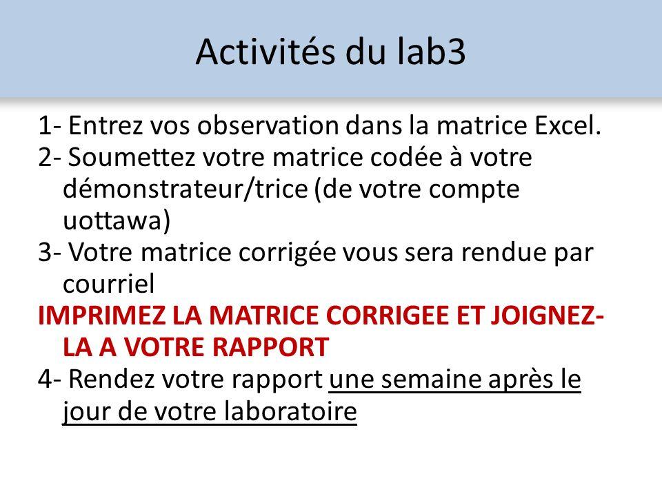 Activités du lab3 1- Entrez vos observation dans la matrice Excel. 2- Soumettez votre matrice codée à votre démonstrateur/trice (de votre compte uotta