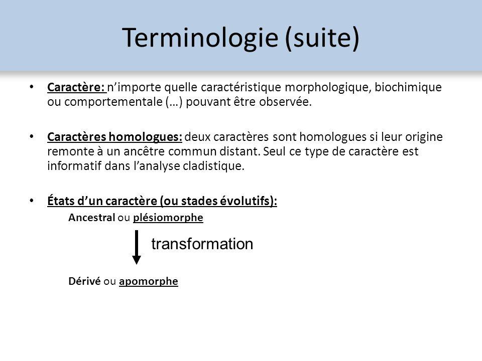 Terminologie (suite) Caractère: nimporte quelle caractéristique morphologique, biochimique ou comportementale (…) pouvant être observée. Caractères ho