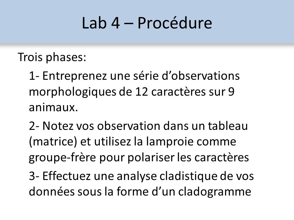 Lab 4 – Procédure Trois phases: 1- Entreprenez une série dobservations morphologiques de 12 caractères sur 9 animaux. 2- Notez vos observation dans un