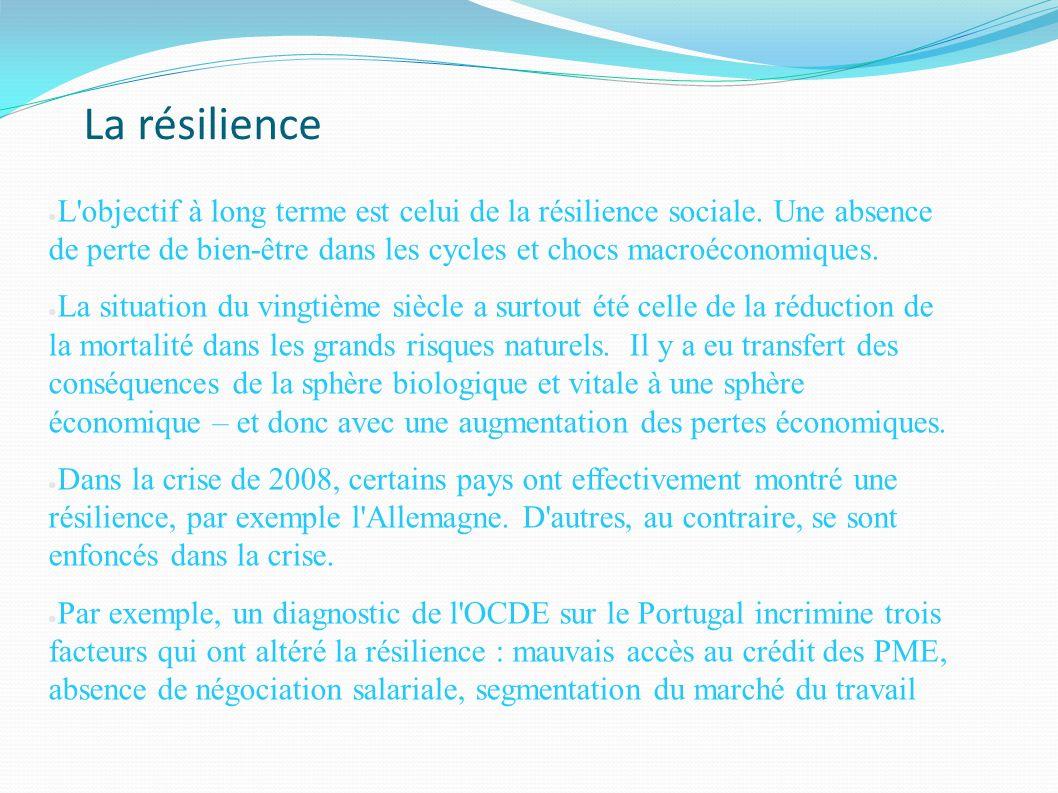 La résilience L'objectif à long terme est celui de la résilience sociale. Une absence de perte de bien-être dans les cycles et chocs macroéconomiques.