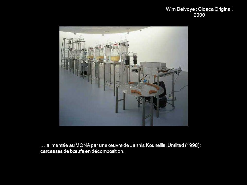 Wim Delvoye : Cloaca Original, 2000 … alimentée au MONA par une œuvre de Jannis Kounellis, Untilted (1998) : carcasses de bœufs en décomposition.