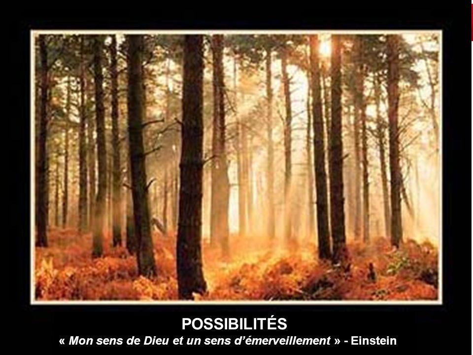 9 POSSIBILITÉS « Mon sens de Dieu et un sens démerveillement » - Einstein
