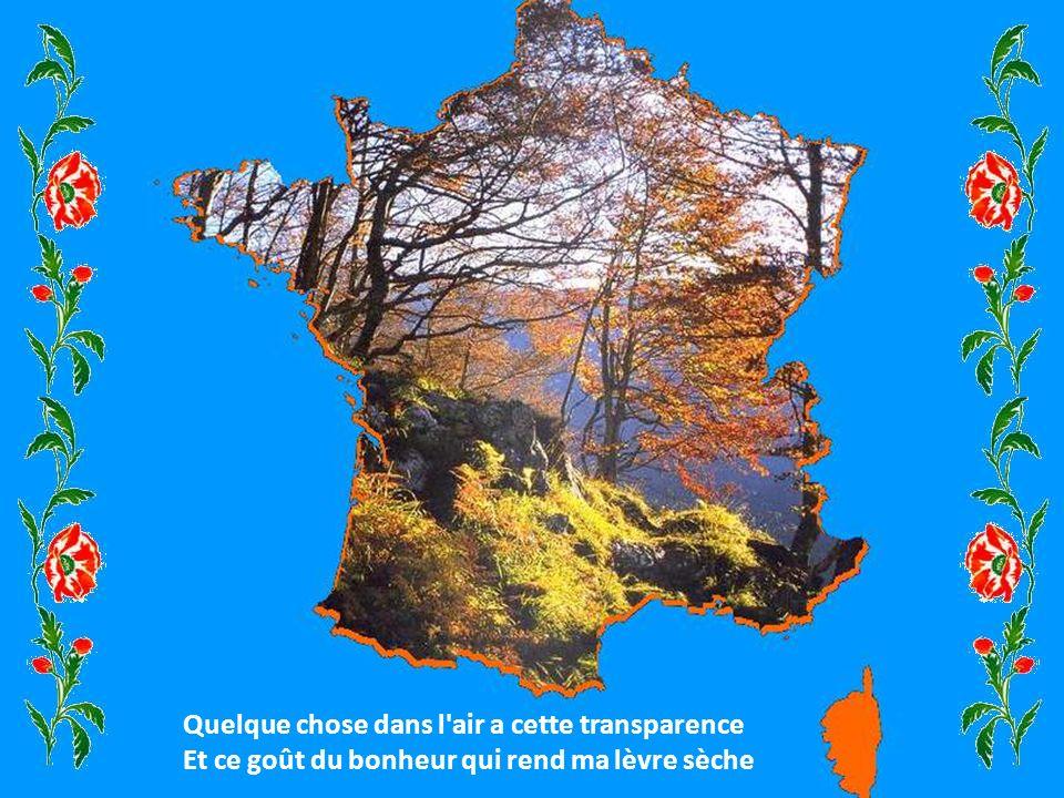 Au grand soleil d'été qui courbe la Provence Des genêts de Bretagne aux bruyères d'Ardèche