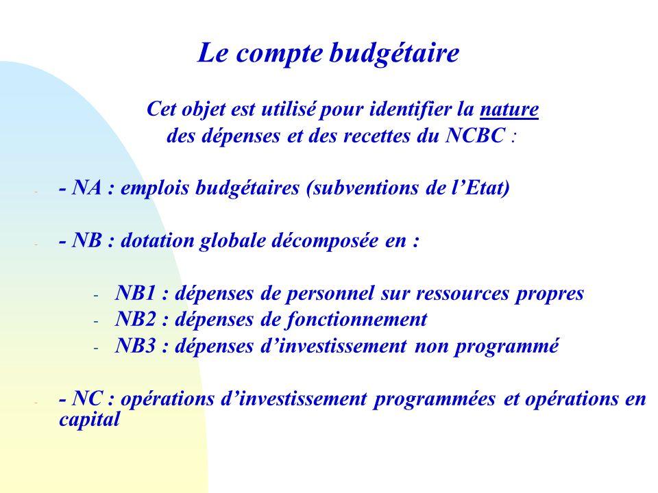 Le compte budgétaire Cet objet est utilisé pour identifier la nature des dépenses et des recettes du NCBC : - - NA : emplois budgétaires (subventions de lEtat) - - NB : dotation globale décomposée en : - NB1 : dépenses de personnel sur ressources propres - NB2 : dépenses de fonctionnement - NB3 : dépenses dinvestissement non programmé - - NC : opérations dinvestissement programmées et opérations en capital