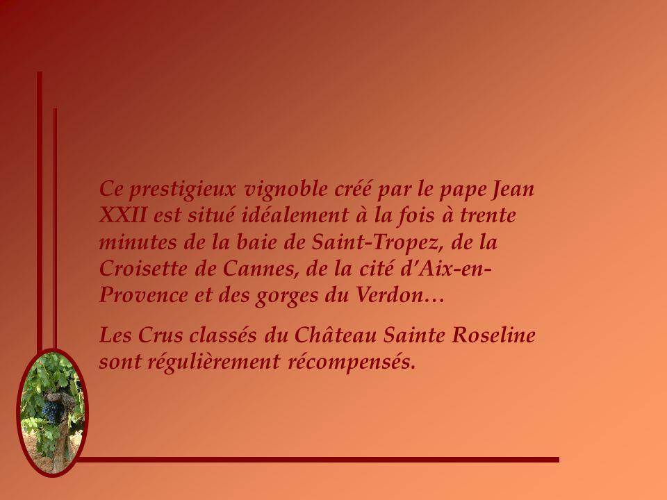 Ce prestigieux vignoble créé par le pape Jean XXII est situé idéalement à la fois à trente minutes de la baie de Saint-Tropez, de la Croisette de Cannes, de la cité dAix-en- Provence et des gorges du Verdon… Les Crus classés du Château Sainte Roseline sont régulièrement récompensés.