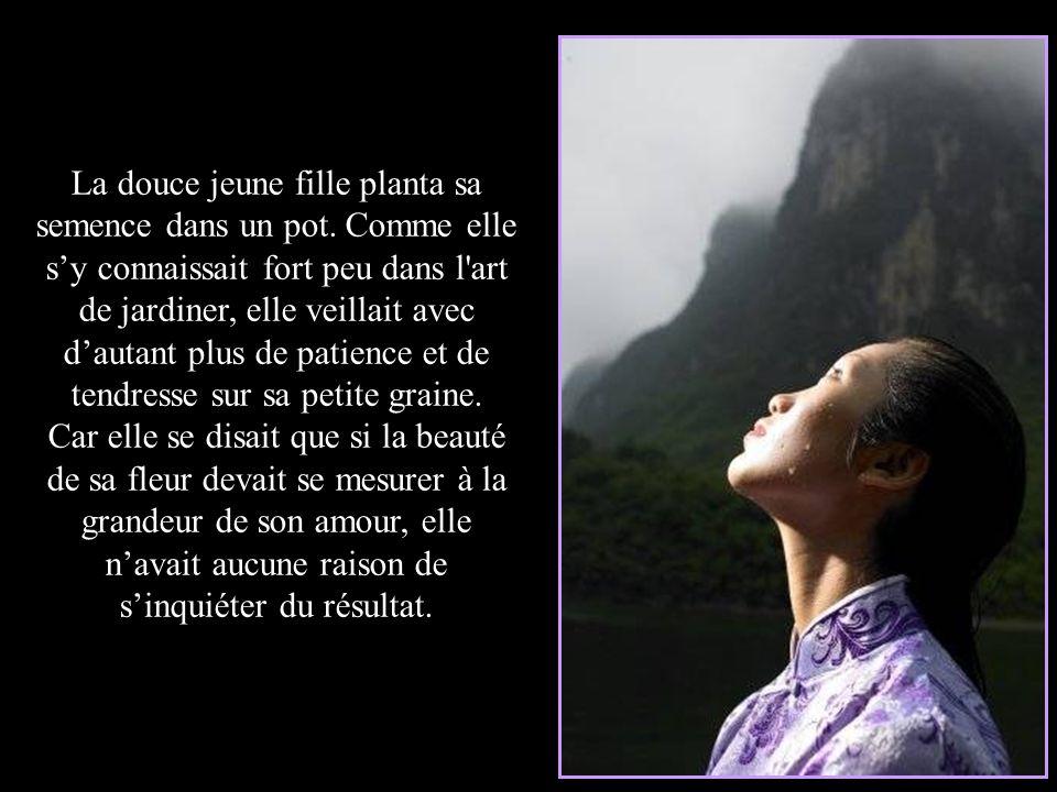 La requête du prince sinspirait des traditions ancestrales de ce pays, lesquelles magnifient lart de cultiver, quil sagisse de la culture des plantes,