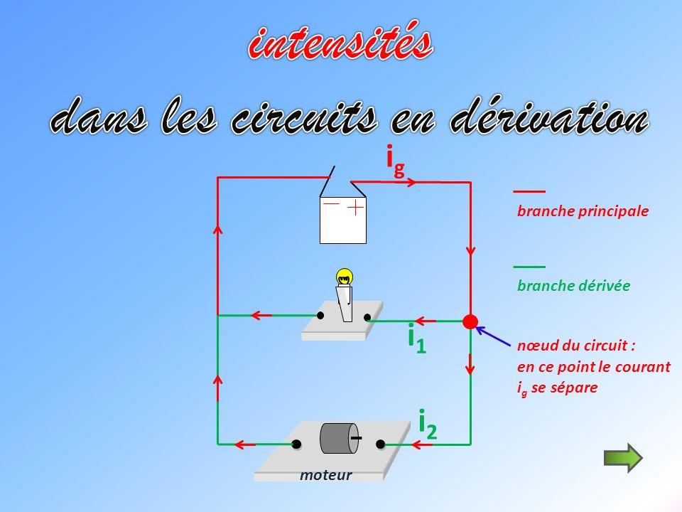 moteur i1i1 igig i2i2 branche principale branche dérivée nœud du circuit : en ce point le courant i g se sépare