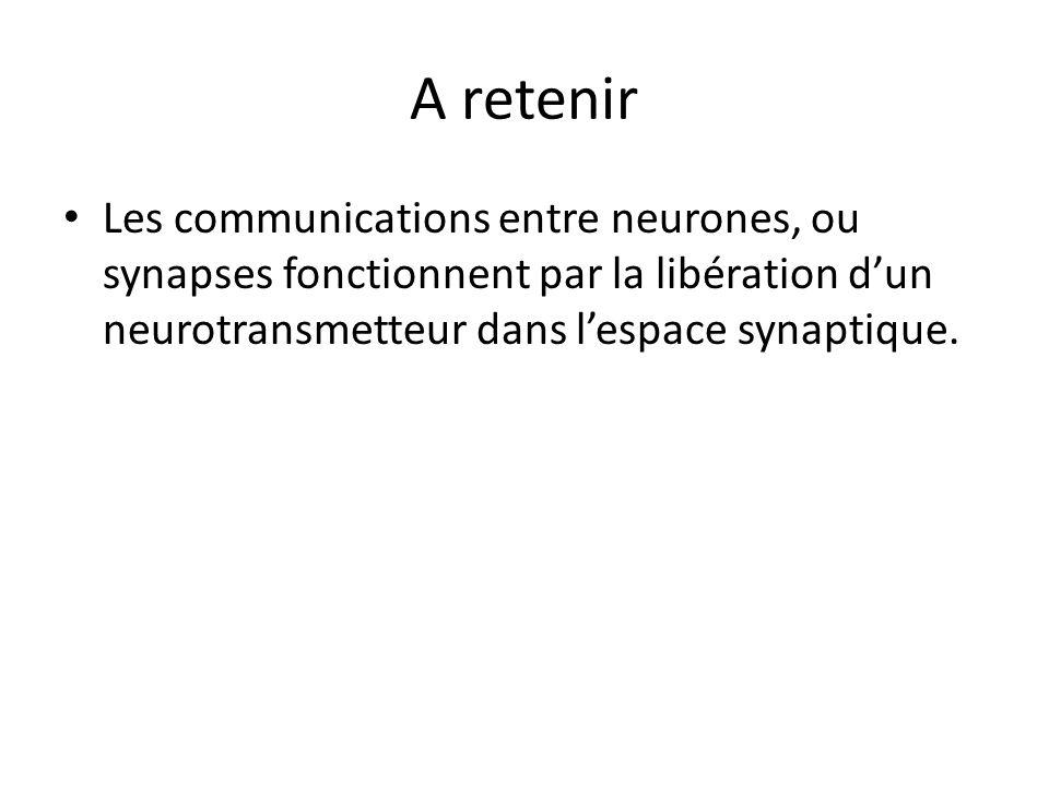 A retenir Les communications entre neurones, ou synapses fonctionnent par la libération dun neurotransmetteur dans lespace synaptique.