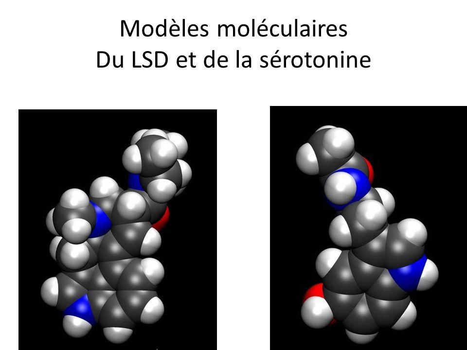 Modèles moléculaires Du LSD et de la sérotonine
