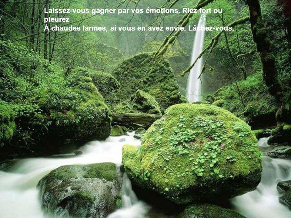 Laissez-vous gagner par vos émotions.Riez fort ou pleurez À chaudes larmes, si vous en avez envie.