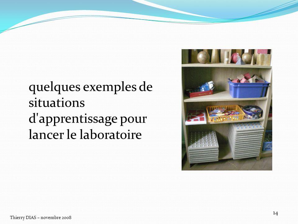Thierry DIAS – novembre 2008 14 quelques exemples de situations d'apprentissage pour lancer le laboratoire