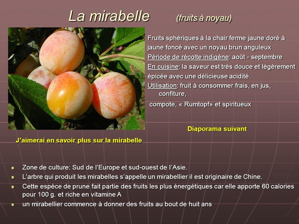 La mirabelle (fruits à noyau) Fruits sphériques à la chair ferme jaune doré à jaune foncé avec un noyau brun anguleux Période de récolte indigène: aoû