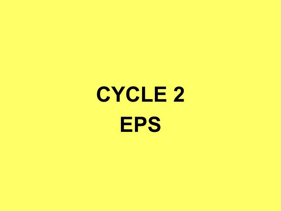 CYCLE 2 EPS