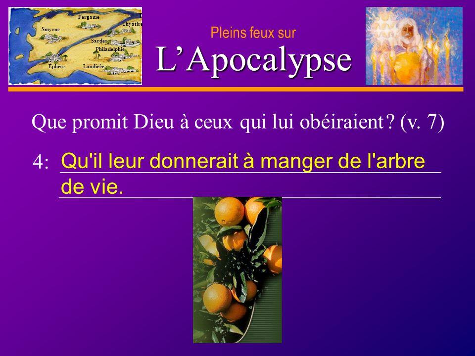 D anie l Pleins feux sur 19 LApocalypse Pleins feux sur Smyrne Pergame Thyatire Sardes Philadelphie Laodicée Éphèse 11.