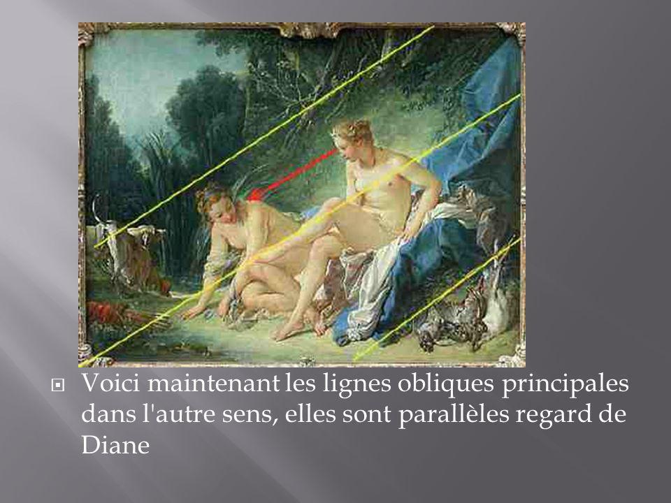 Voici maintenant les lignes obliques principales dans l'autre sens, elles sont parallèles regard de Diane