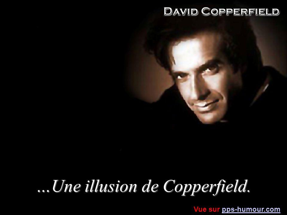 …Une illusion de Copperfield. Vue sur pps-humour.compps-humour.com