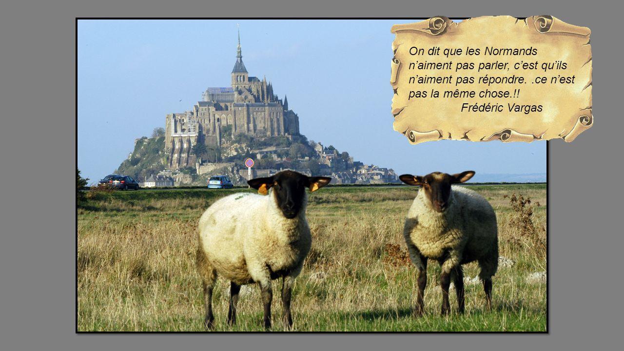 On dit que les Normands naiment pas parler, cest quils naiment pas répondre..ce nest pas la même chose.!.