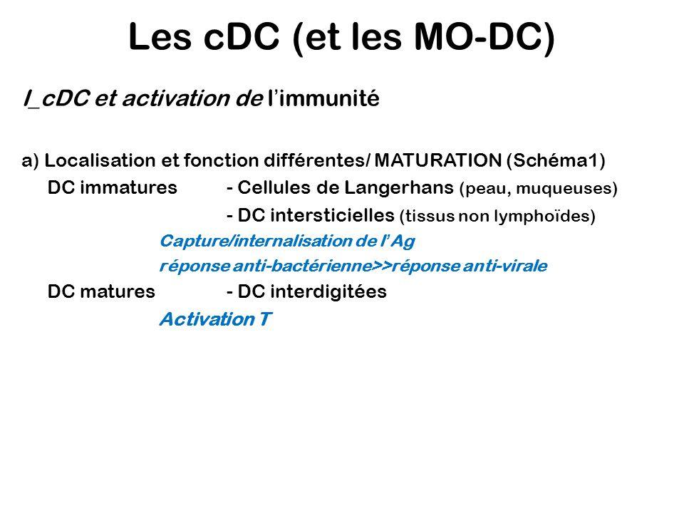 Schéma 1: La maturation des cDC Tissus: Capture de lAg Ag Réaction inflammatoire: TNF, IL-1, IL-6, CCL3, CCL4, CCL5 ou LC résidentes CCL20 DC immatures Vaisseaux lymphatiques: Maturation (signal de danger) DC matures Ganglions: Activation des lymphocytes T T naïfs Sang CCR7 Récepteur au mannose/ DC-SIGN v 5 / 3 Cellule apoptotique CCR1 CCR5 CCR6 CCR7 CD86 CD80 Scavenger receptors Hsp-Ag CCL19 CCL21 Toll-like Receptors (TLR surtout 2 et 4) CD36 CMH I CMH II MFGE8 TLR3