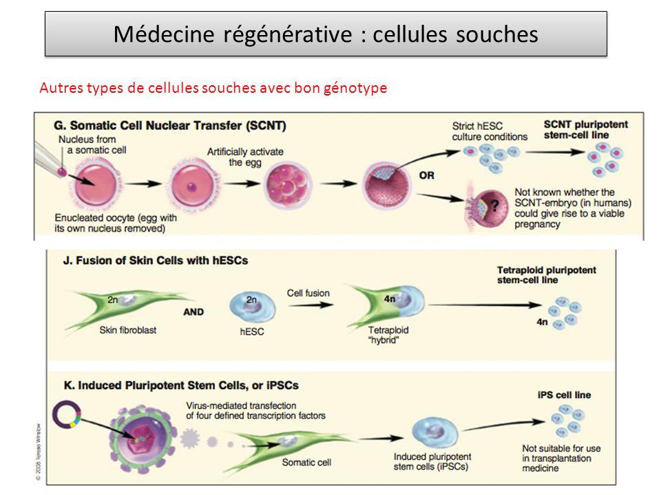 Médecine régénérative : cellules souches Autres types de cellules souches avec bon génotype