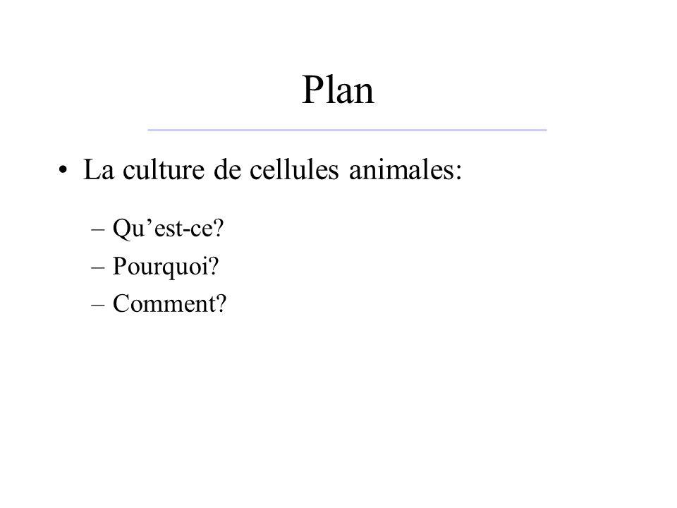 Plan La culture de cellules animales: –Quest-ce? –Pourquoi? –Comment?