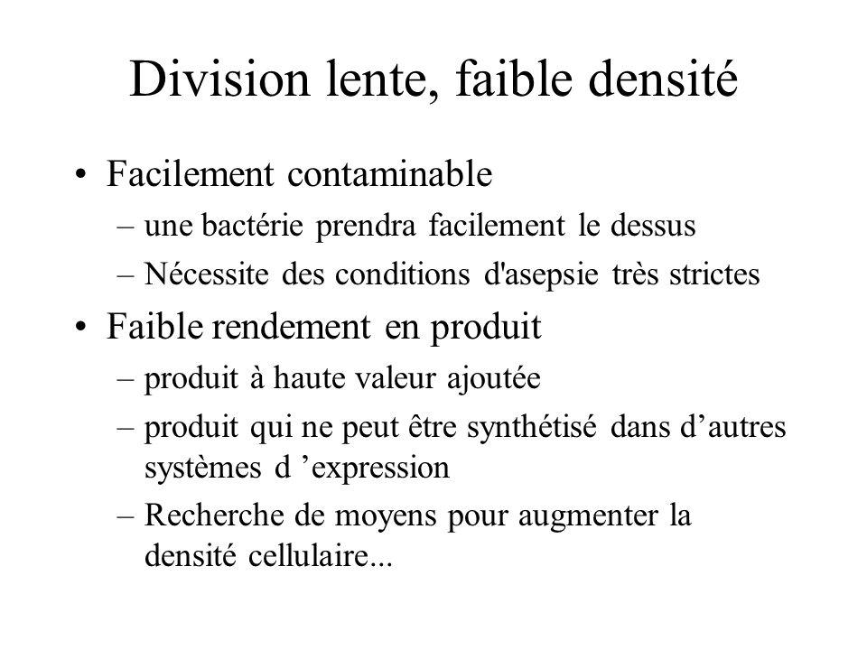 Division lente, faible densité Facilement contaminable –une bactérie prendra facilement le dessus –Nécessite des conditions d'asepsie très strictes Fa