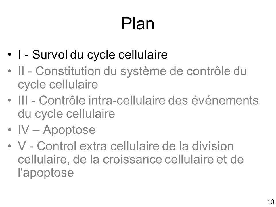 10 Plan I - Survol du cycle cellulaire II - Constitution du système de contrôle du cycle cellulaire III - Contrôle intra-cellulaire des événements du