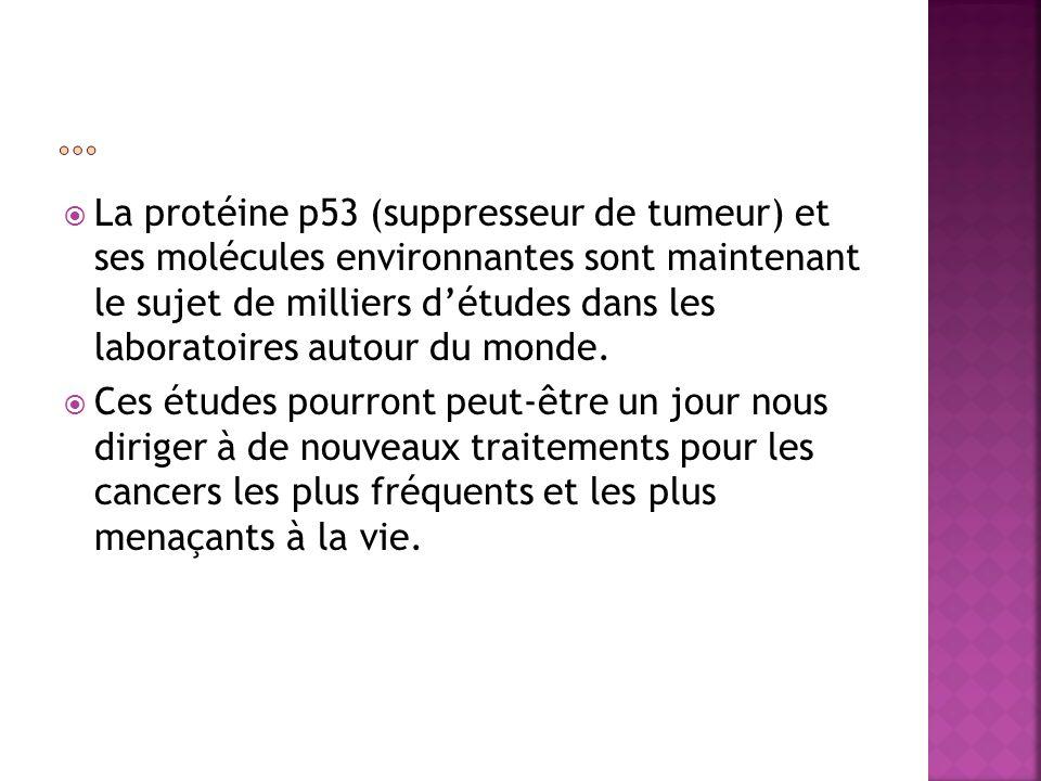 La protéine p53 (suppresseur de tumeur) et ses molécules environnantes sont maintenant le sujet de milliers détudes dans les laboratoires autour du mo