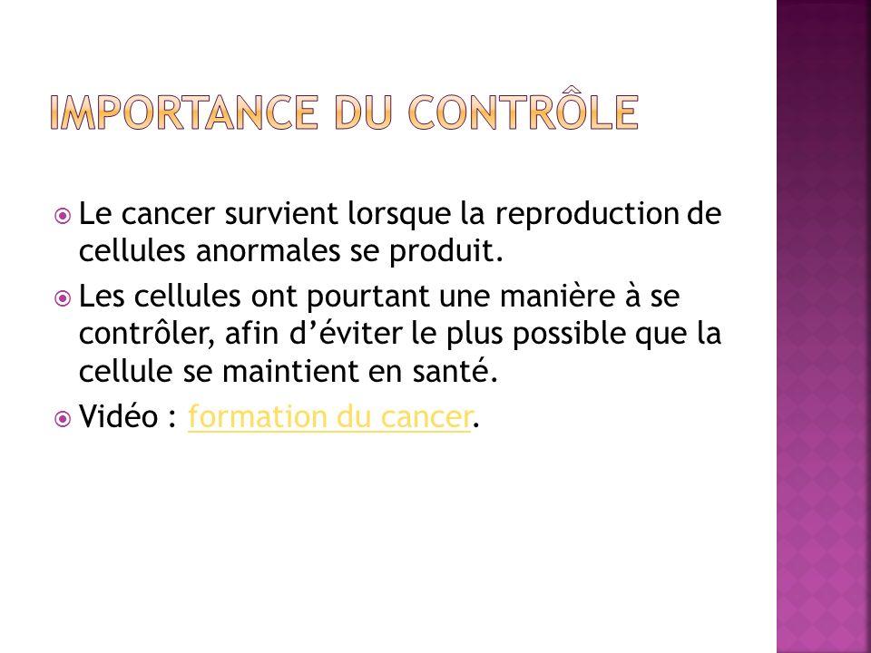 Le cancer survient lorsque la reproduction de cellules anormales se produit. Les cellules ont pourtant une manière à se contrôler, afin déviter le plu