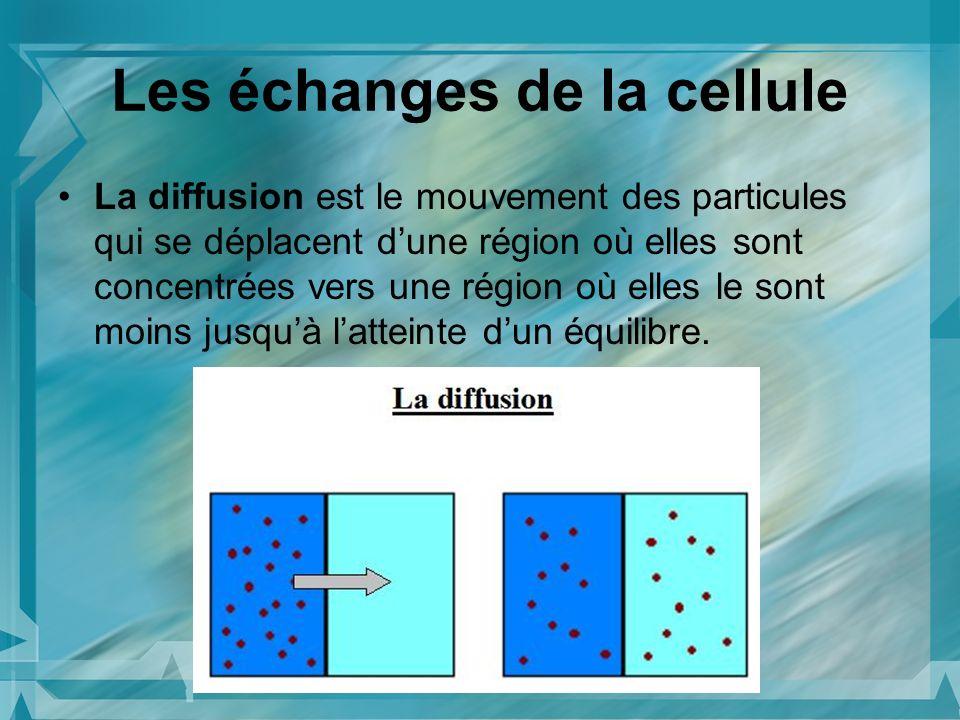 Les échanges de la cellule La diffusion est le mouvement des particules qui se déplacent dune région où elles sont concentrées vers une région où elle