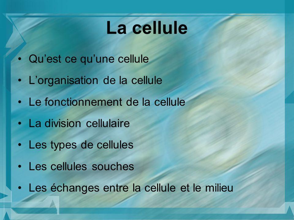 Quest ce quune cellule Lorganisation de la cellule Le fonctionnement de la cellule La division cellulaire Les types de cellules Les cellules souches L